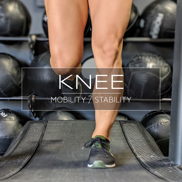 Knee-MS-new