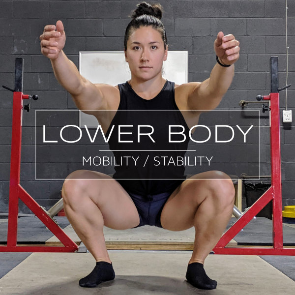 Lower-Body-MS-new